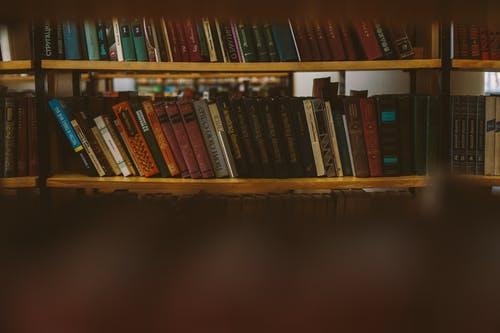 Photo Of Books On Brown Shelves