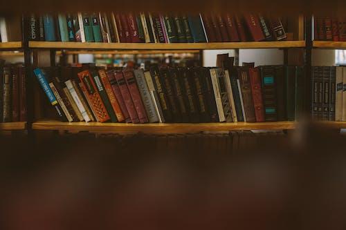 Foto Di Libri Sugli Scaffali Marroni