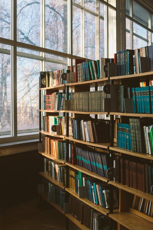 Immagine gratuita di biblioteca, collezione, conoscenza, dati