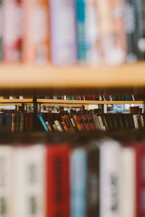 Selektiver Fokus Foto Von Büchern Auf Bücherregal
