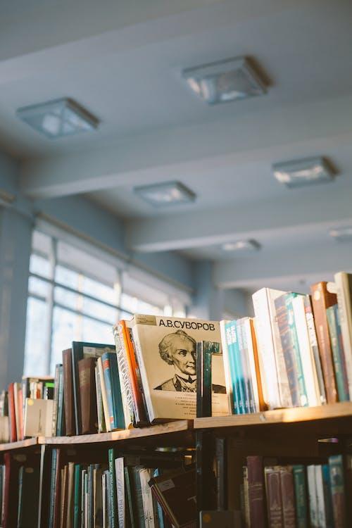 Foto Von Büchern Auf Braunen Regalen