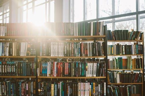 Δωρεάν στοκ φωτογραφιών με βιβλία, βιβλίο, βιβλίο παραπομπής, βιβλιοδεσίες