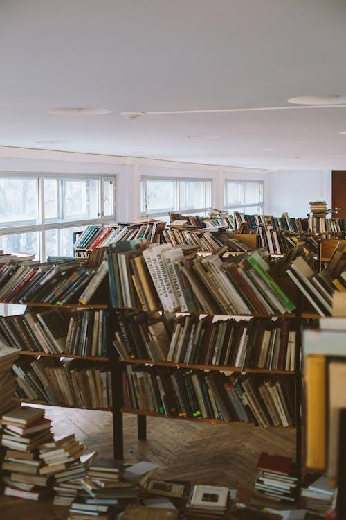 badania, biblioteka, edukacja