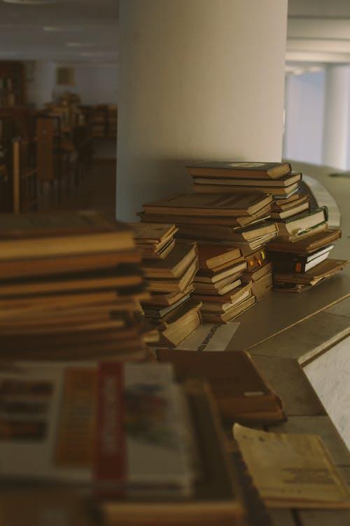 Foto profissional grátis de biblioteca, conhecimento, dado, educação