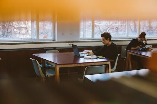 Gratis stockfoto met aan het studeren, bibliotheek, binnen, boeken