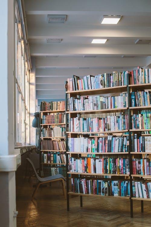 Foto De Libros En Estanterías