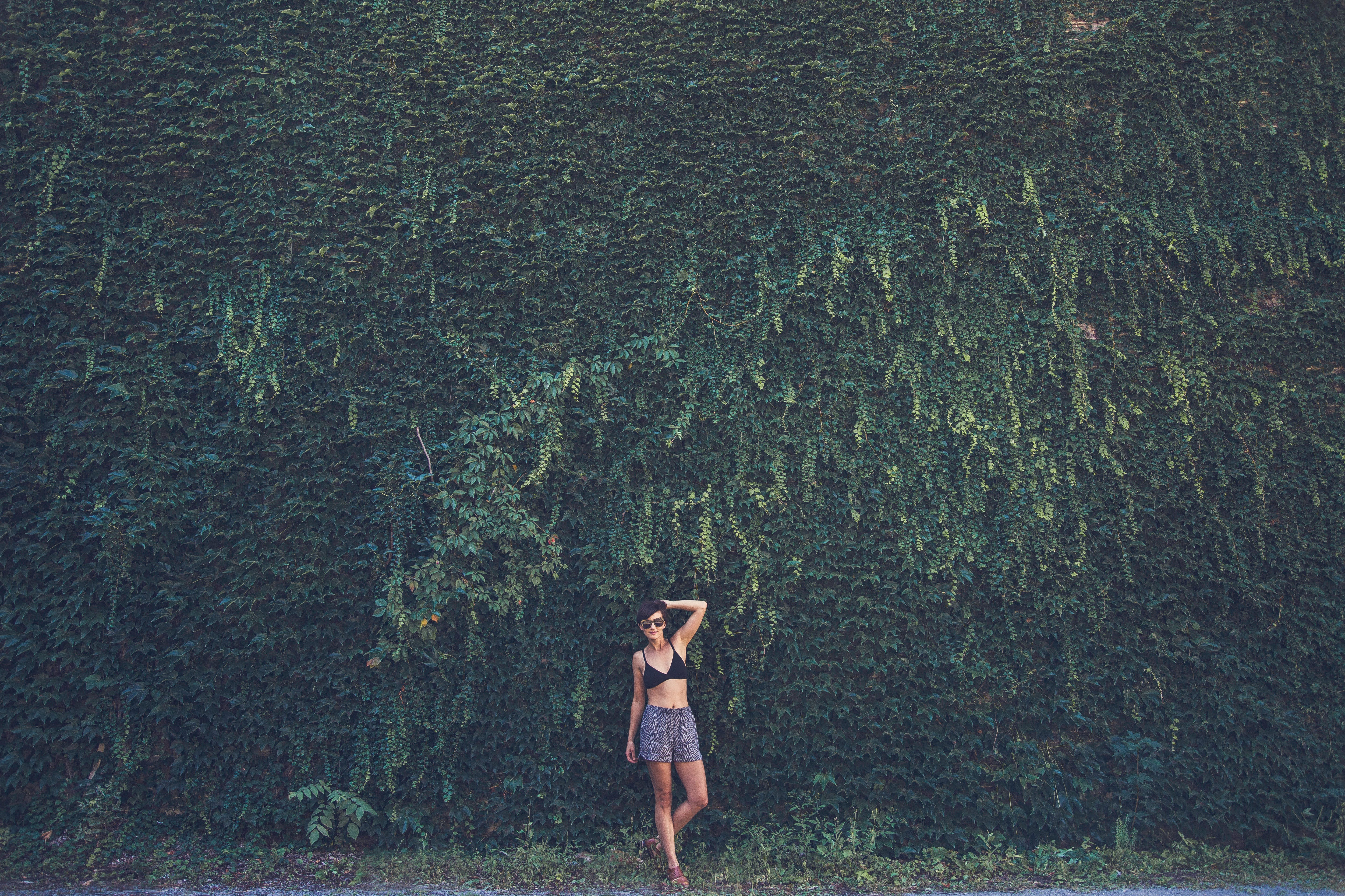 Woman in Black Bikini Top on Green Leafed Plant