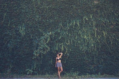 Kostenloses Stock Foto zu erwachsener, fashion, fotoshooting, frau