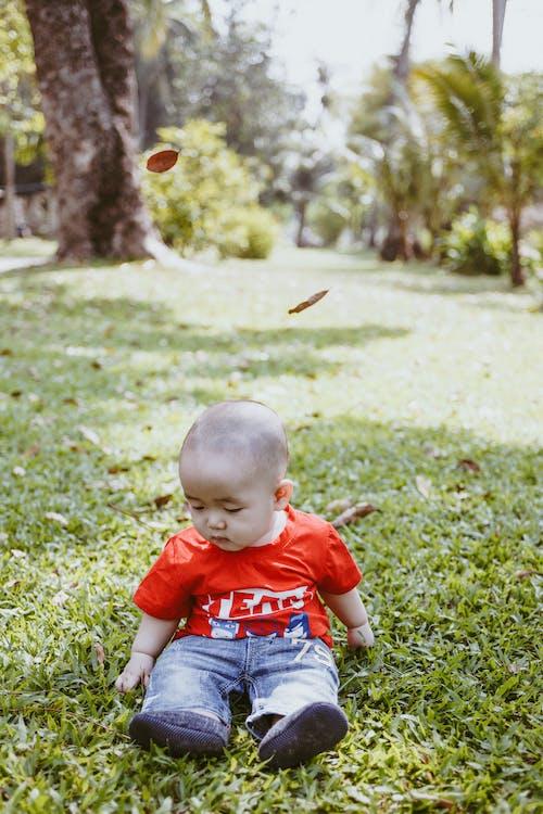 Kostnadsfri bild av brud, liten bebis, liten pojke, pojke
