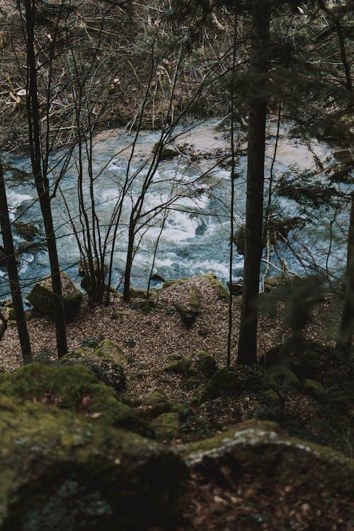 Stream of river in mountainous terrain