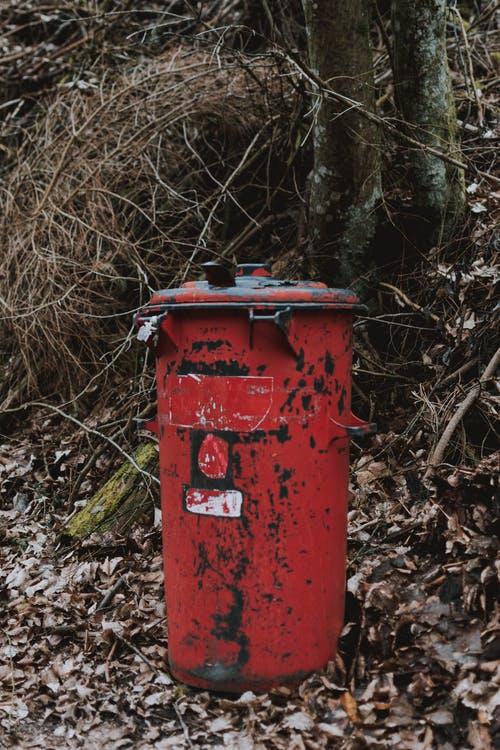 Red shabby trash can placed in autumn park with yellow fallen leaves and dry trees