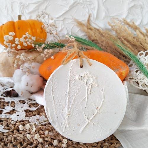 Free stock photo of autumn, autumn color, autumn decoration