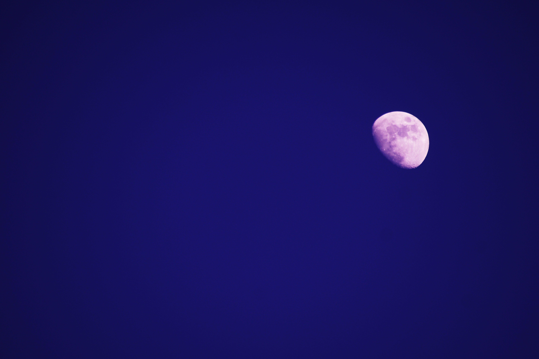 Free stock photo of nature, sky, night, moon