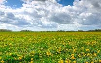landscape, nature, clouds