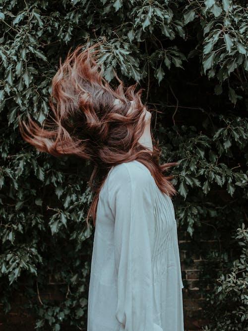 Imagine de stoc gratuită din a da din cap, brunetă, femeie, frunze verzi
