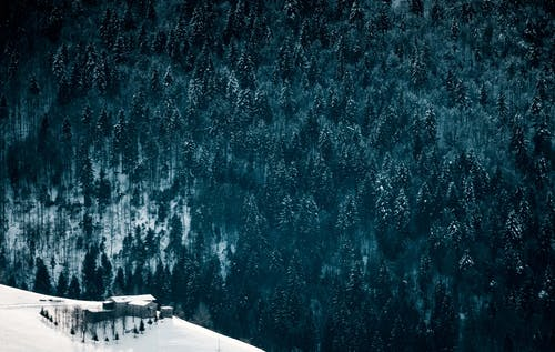 Small house near mountains with trees in winter