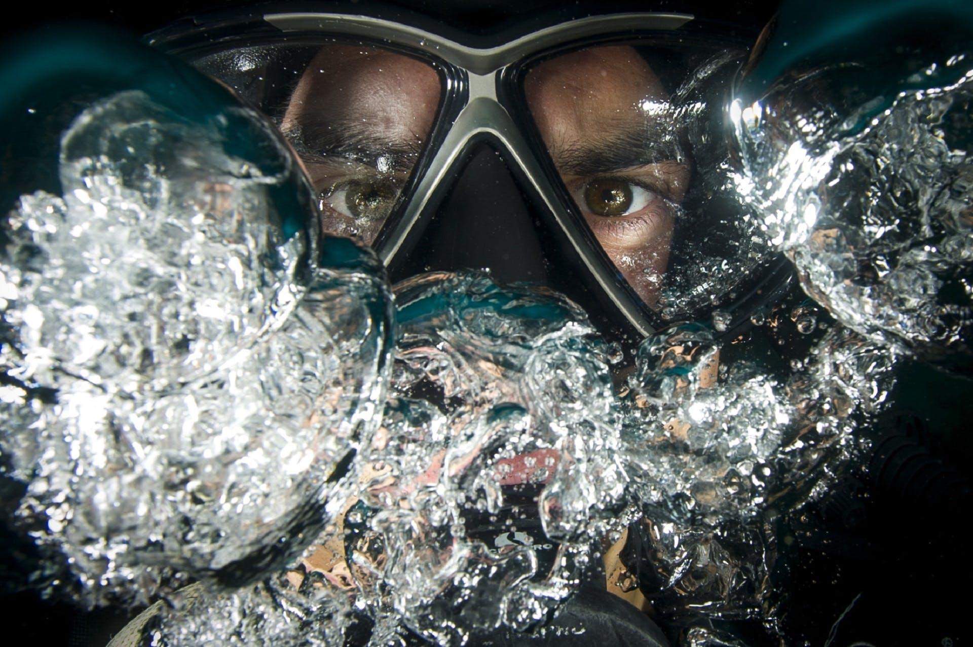 bubbles, dive, diver