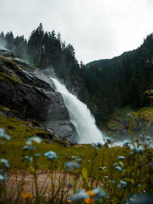Foto stok gratis air, air jatuh, air terjun, alam