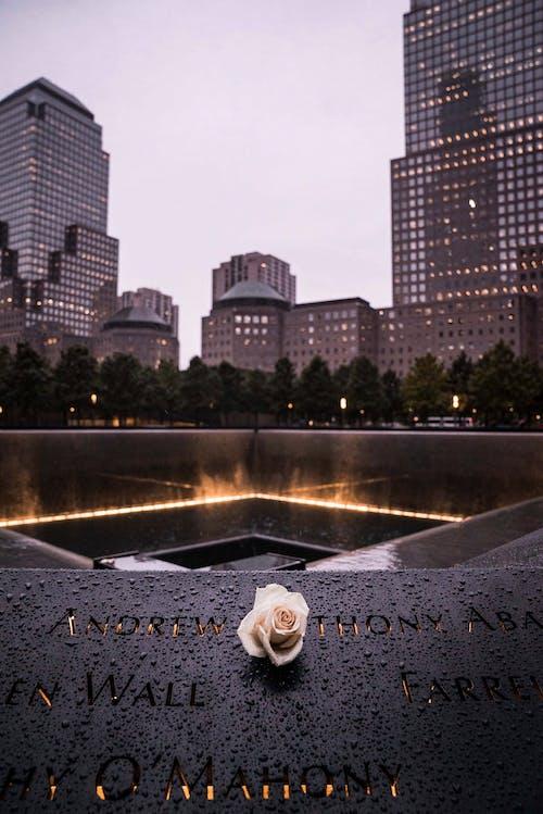 คลังภาพถ่ายฟรี ของ #outdoorchallenge, 9/11, กลางแจ้ง, การถ่ายภาพกลางแจ้ง