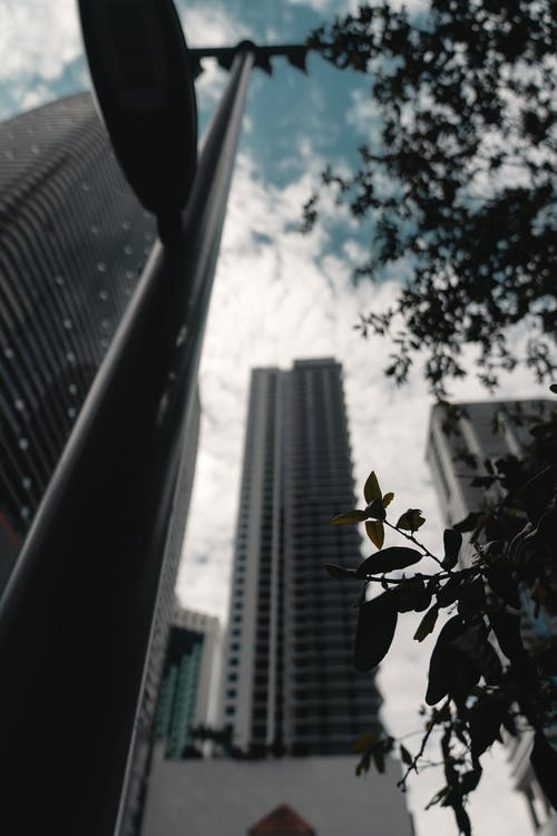 Základová fotografie zdarma na téma architektura, exteriér budovy, krásná obloha, listy