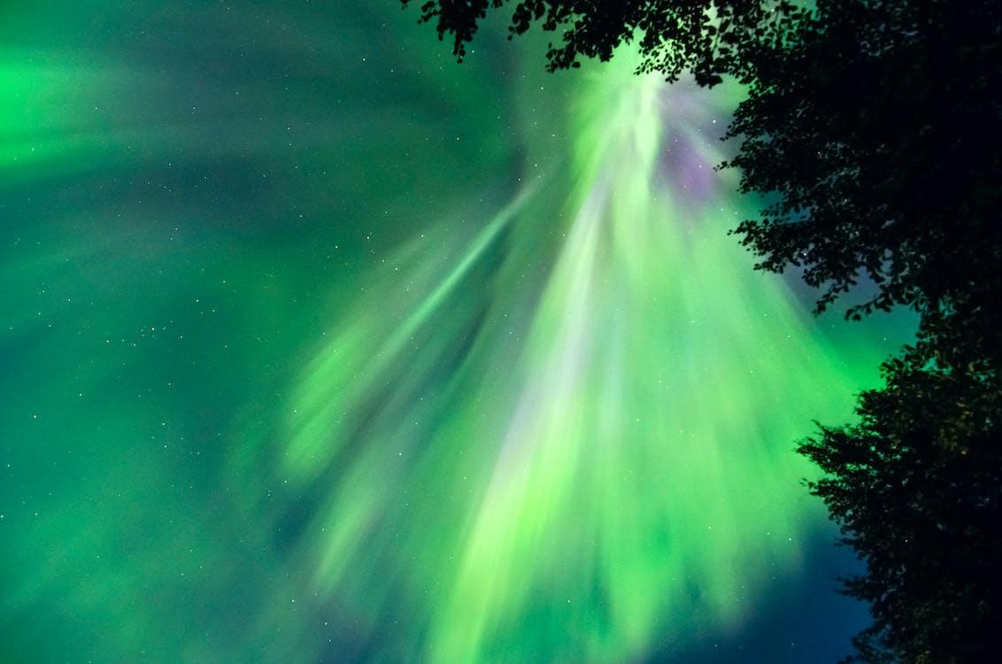 aurora, aurora boreală, borealis