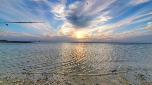 Fotos de stock gratuitas de costa, lago, lago falcon