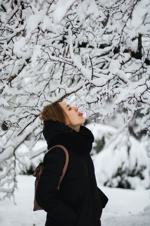Woman in Black Jacket Standing Near White Tree Covered With Snow