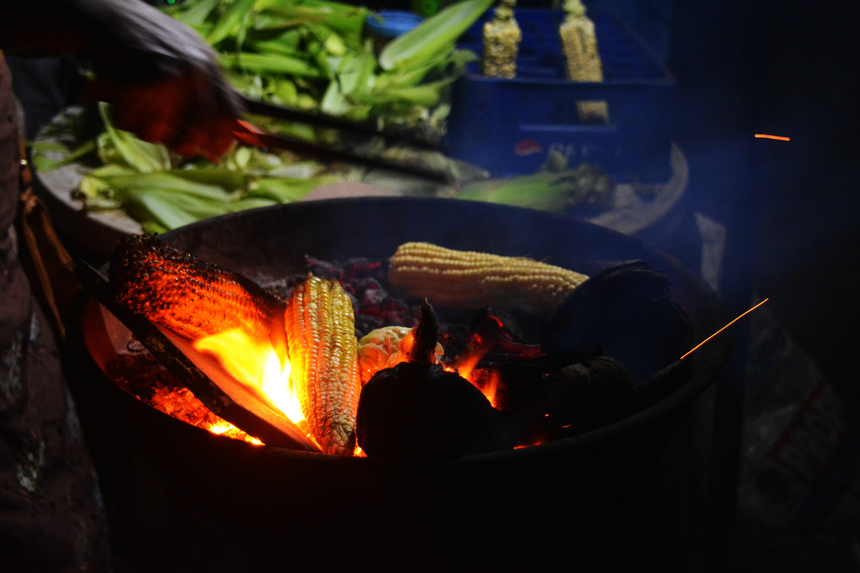 Free stock photo of beach, burn, cook, corn