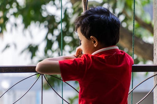 Free stock photo of asian boy, asian children, boy