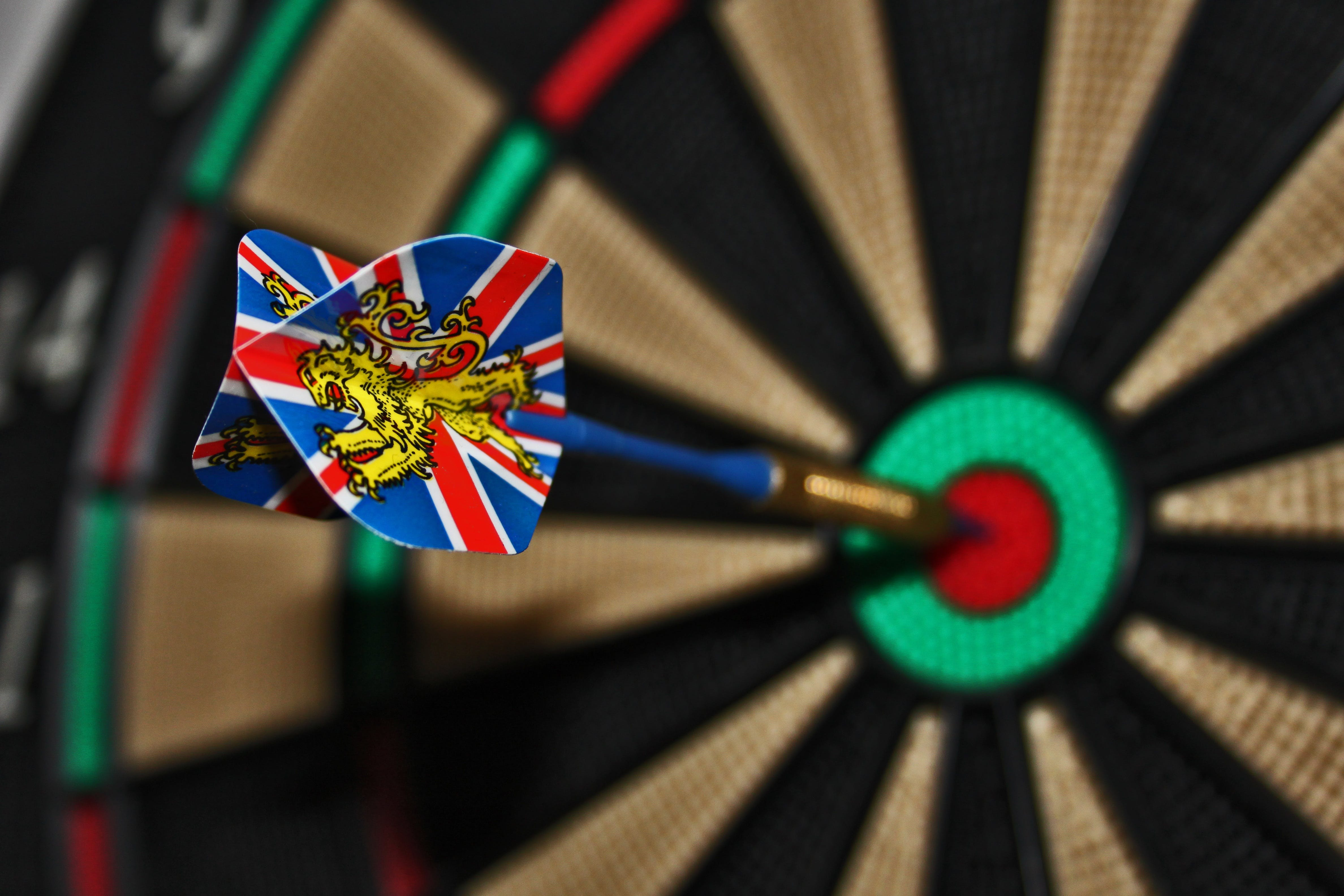 Blue Brown Dart on Red Green Black Dartboard