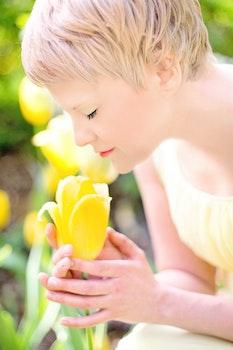 Woman Wearing Yellow Dress Holding Yellow Tulip Flower