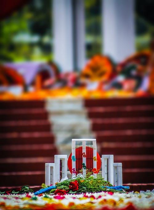 Fotos de stock gratuitas de shohidminar