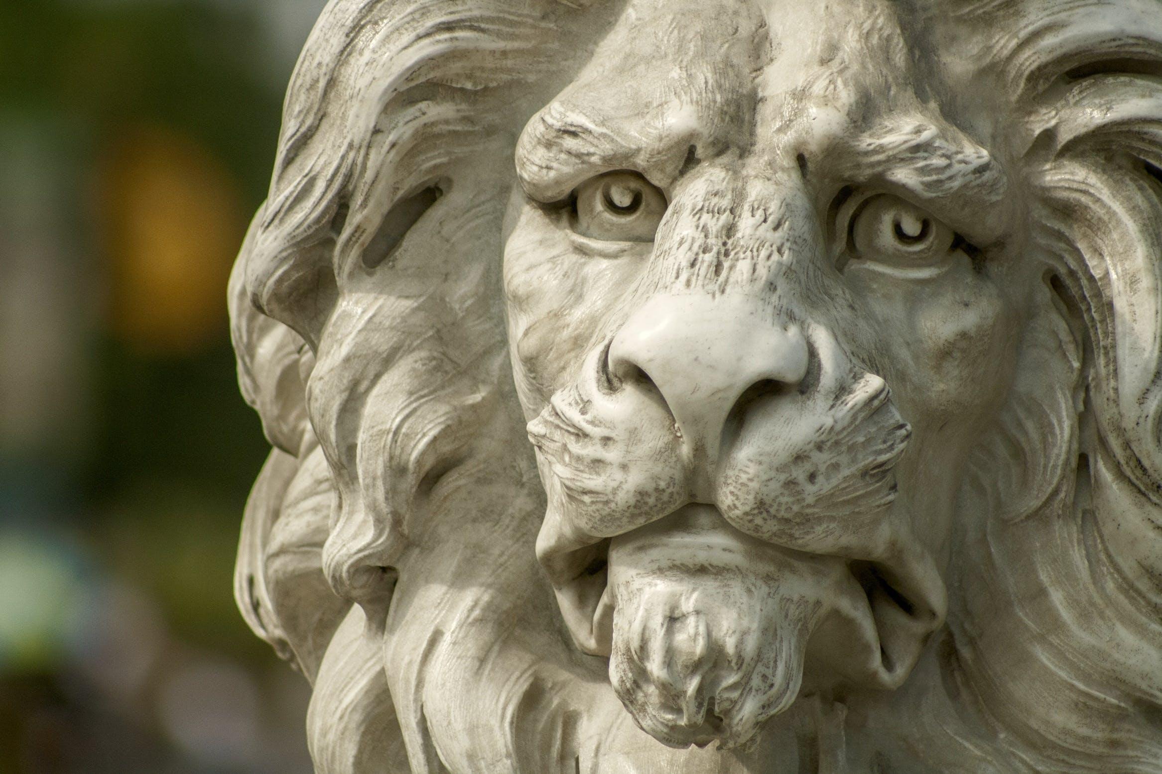 Selective Focus Photography of White Concrete Lion Statue