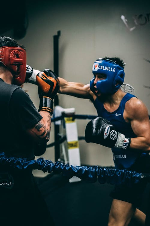 Male fighters in boxing gear training in ring