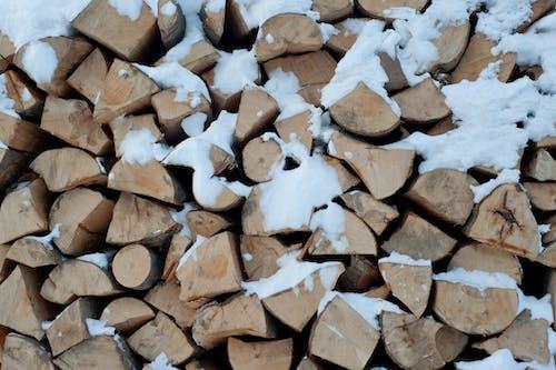 Kostnadsfri bild av grov, hackad, hackat trä, hårt träslag