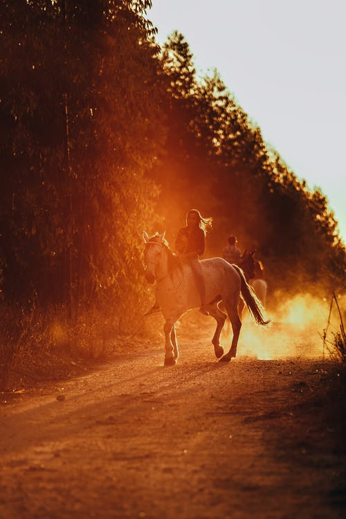 Photo of a Person Riding a Horse
