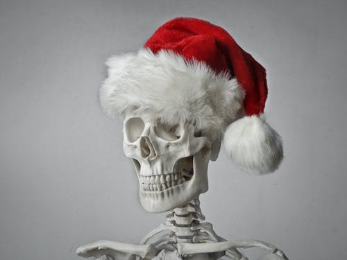 Portrait Photo of a Skeleton in a Santa Hat on