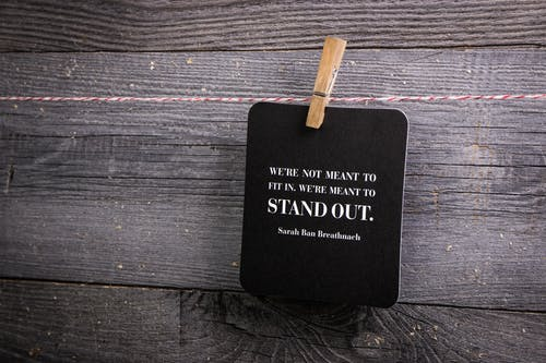 Free stock photo of clothes line, clothes pin, quote, stand out