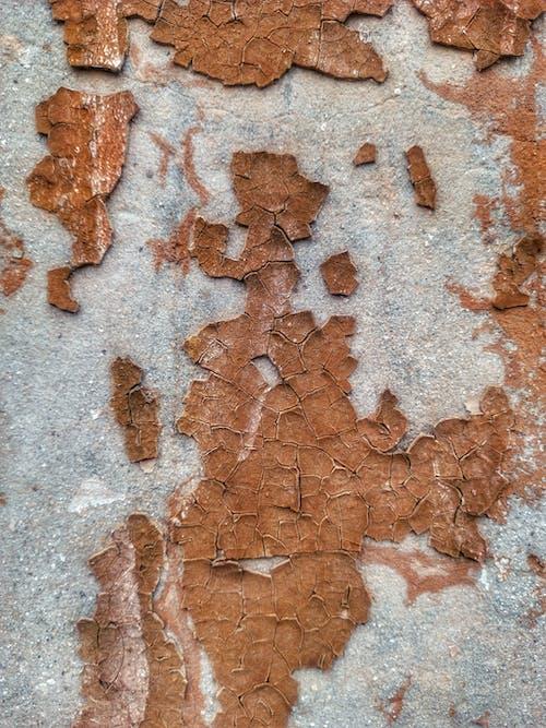 Immagine gratuita di calcestruzzo, cemento, colori, decadente