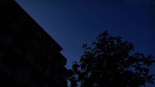 Free stock photo of darkness, night