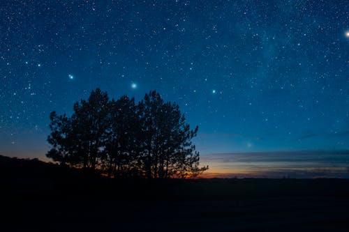 Gratis lagerfoto af aften, astrologi, astronomi, funkle
