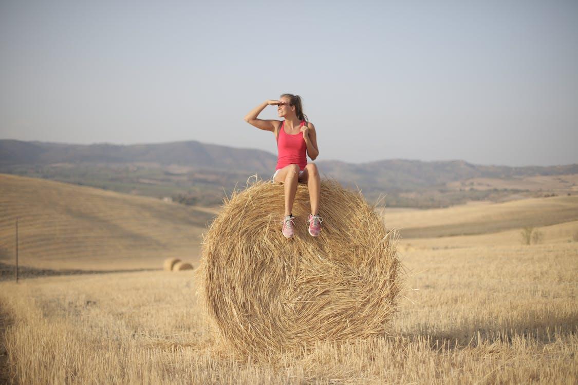 Frau Im Rosa Trägershirt, Das Auf Hay Roll Sitzt
