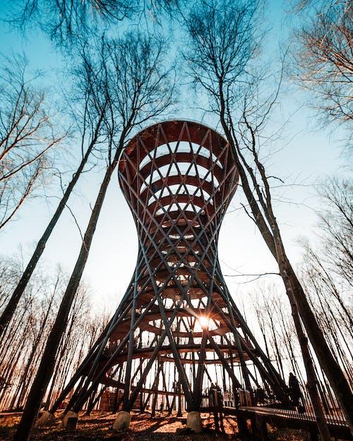 Gratis stockfoto met architectuur, avontuur, bomen