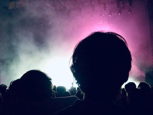 Darmowe zdjęcie z galerii z festiwal, festiwal muzyczny, grupa, grupować
