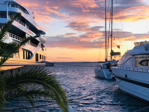 Darmowe zdjęcie z galerii z drzewo palmowe, jacht, łódź, łódź motorowa