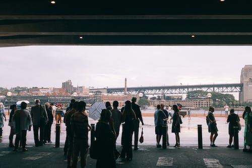 People Standing Under the Bridge