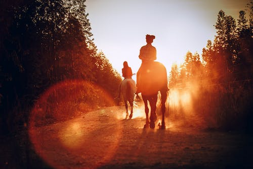 Women on horses in forest on sunset