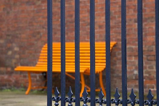 Free stock photo of city, street, orange, color