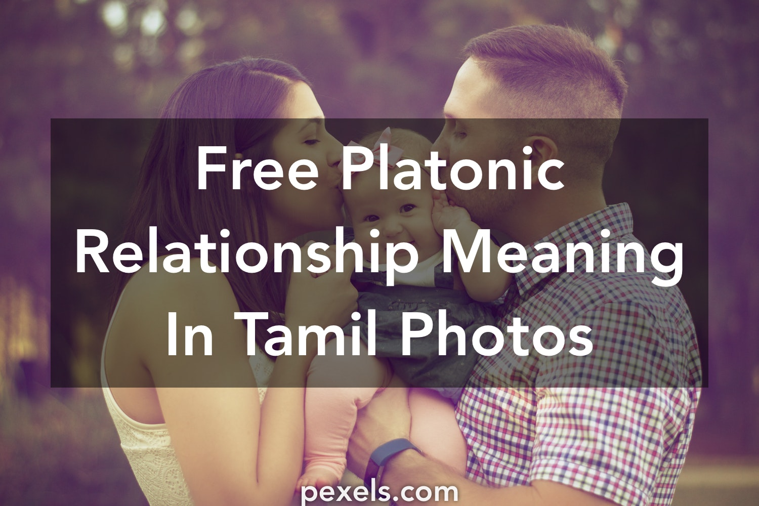 250+ Beautiful Platonic Relationship Meaning In Tamil Photos