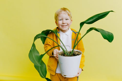 Boy in Yellow Jacket and White Shirt Holding Green Plant in pot